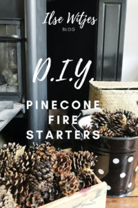 Pinecone firestarters DIY.